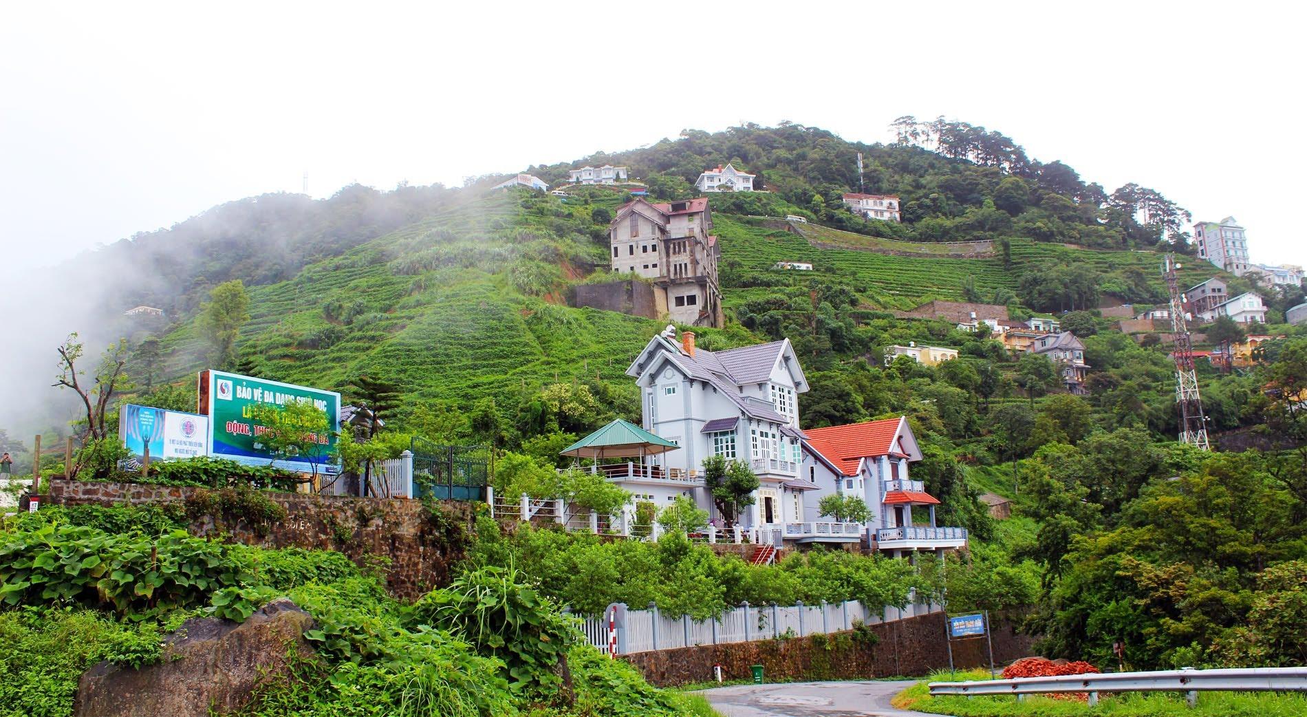 Tam đảo thành phố trong sương, điểm đến thú vị được nhiều khách du lịch  ưa thích