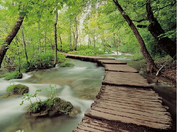 Khung cảnh như tranh tại vườn quốc gia Ba Vì