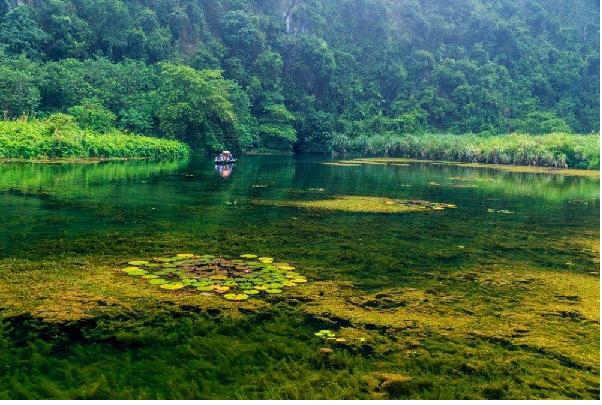 Hình ảnh sắc thu về trên dòng sông Ngô Đồng