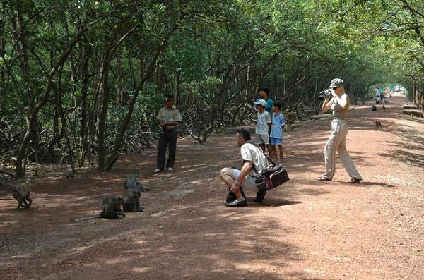 Phượt bụi Cần Giờ khám phá đảo khỉ