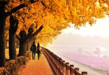 Du lịch Hàn Quốc tự túc 2018 vào mùa thu có gì thú vị?