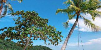 Phượt Hòn Sơn - điểm du lịch bụi lý tưởng ở Kiên Giang